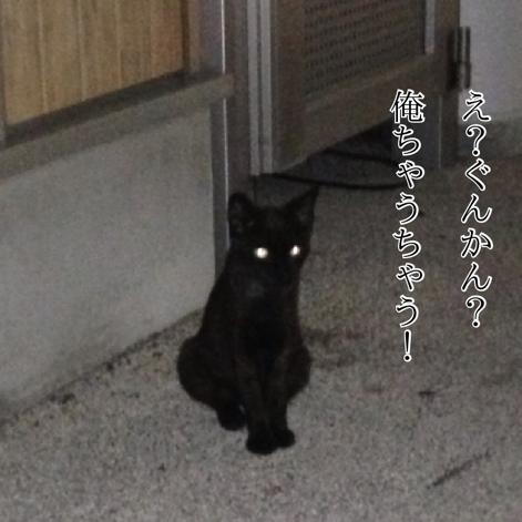 fc2blog_20130829074627df1.jpg