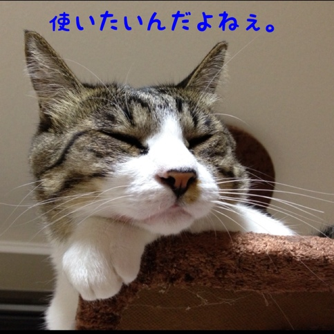 fc2blog_20130918074002c1c.jpg