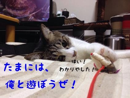 fc2blog_20130922091451e53.jpg
