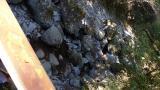 20121104池の平04