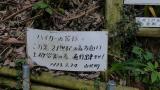 2013070621世紀の森20