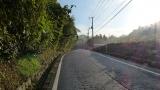20131027原生の森05