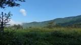 20131027原生の森09