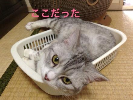 fc2blog_201308162059303e2.jpg