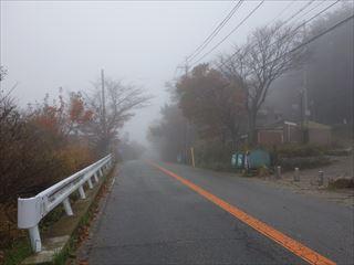 DSC00948-2014t.jpg