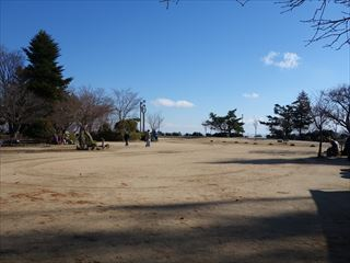 DSC01869-2014t.jpg