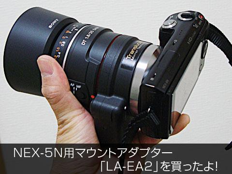 laea2_TOP2.jpg