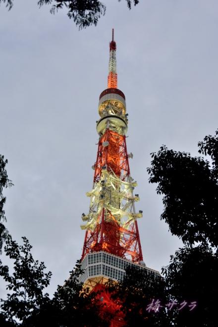 東京タワー1(6-1)変更済
