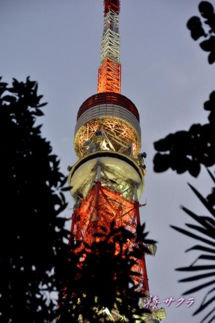 東京タワー1(6-2)変更済