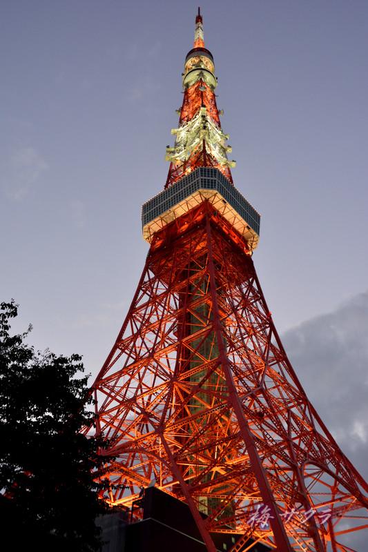 東京タワー1(7)変更済