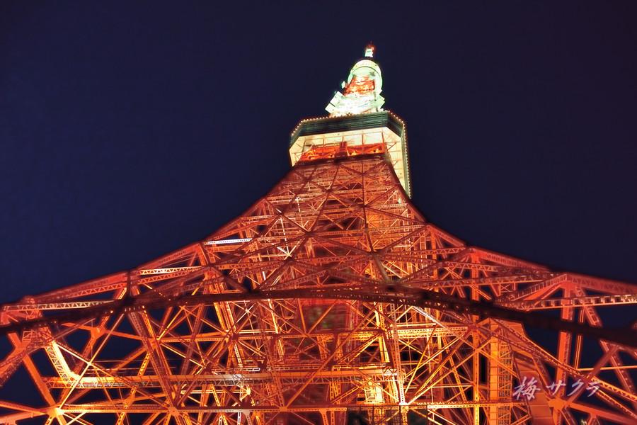 東京タワー2(1)変更済
