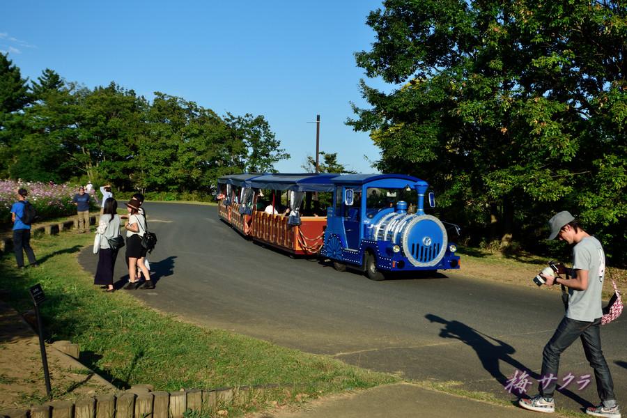 昭和記念公園1(6)変更済