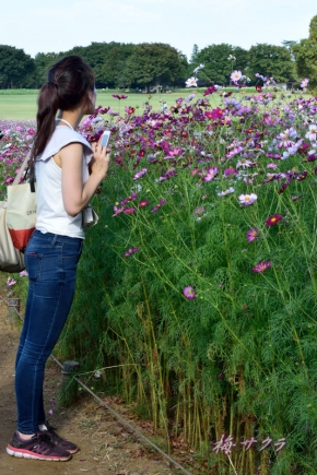 昭和記念公園3(5-1)変更済