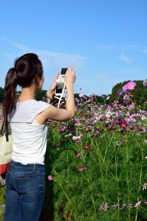 昭和記念公園3(5-2)変更済