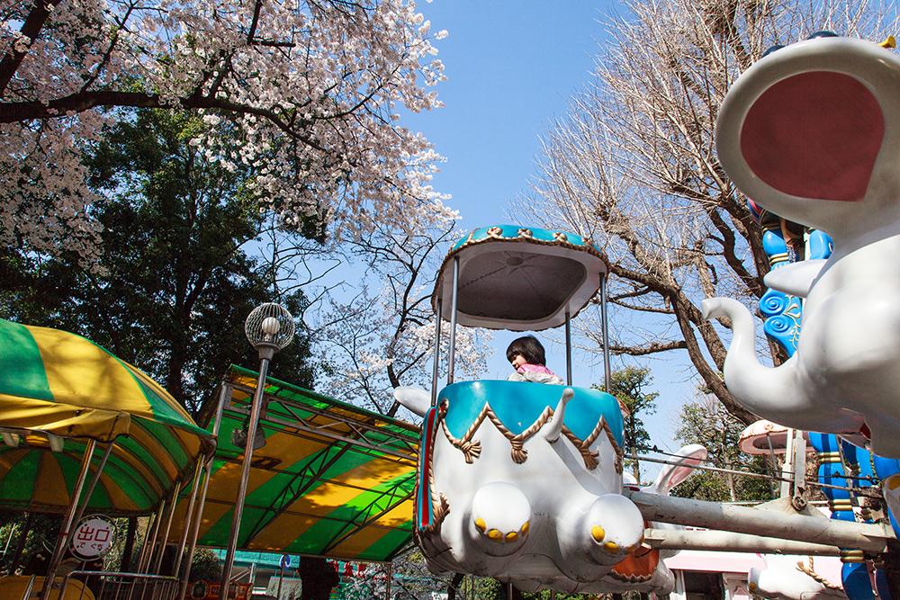 130322上野公園03