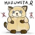 MARUMIYA_R