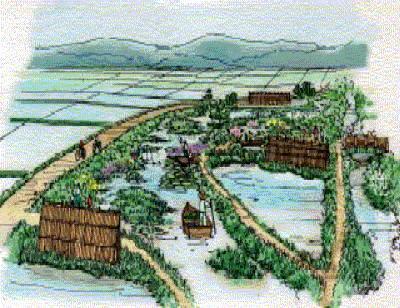 江戸時代の農業