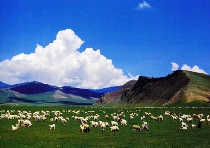 内蒙古の風景
