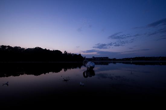 牧野ヶ池-11
