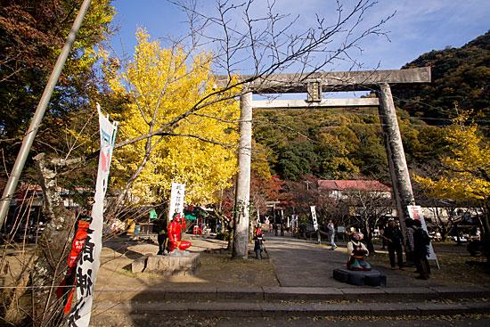 犬山の秋-5