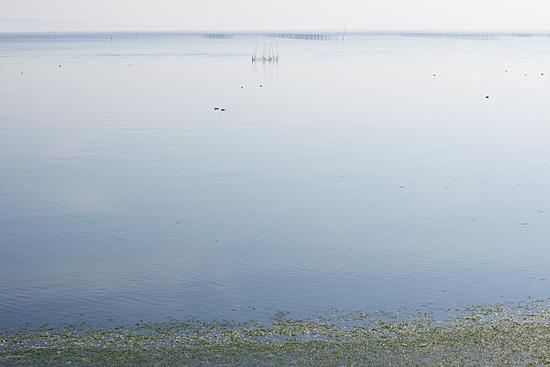 吉良の海-2
