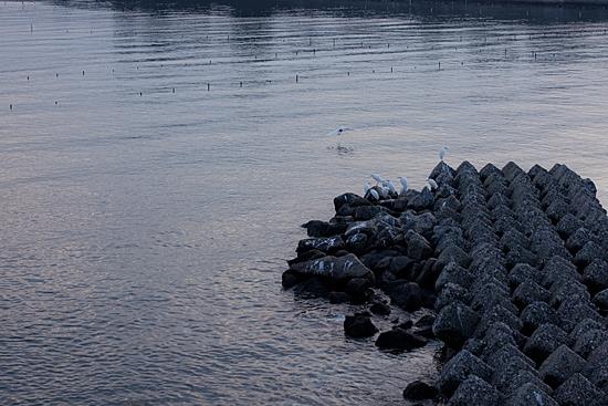 吉良の海4-3