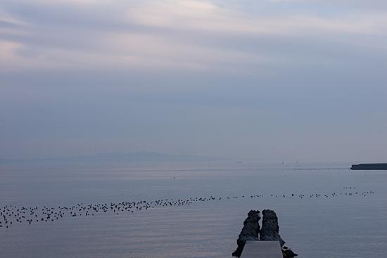 吉良の海4-4