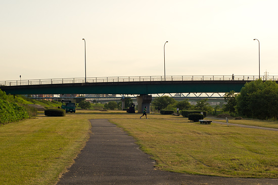 矢田川風景-8