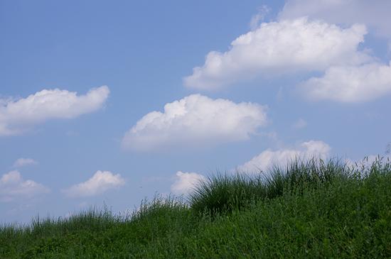 季節の風景-1