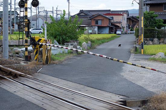 三岐鉄道4-2