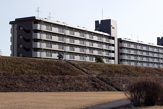 矢田川河川敷-2