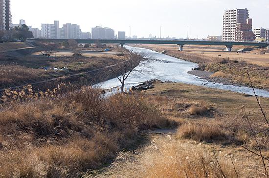 矢田川河川敷-3