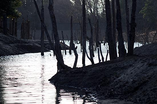 海上の森-9