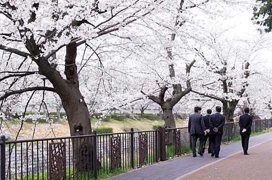 山崎川-10