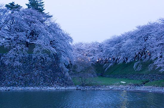 桜めぐり4-7