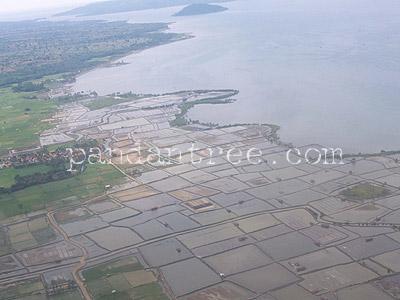 スンバワ島海老養殖池1