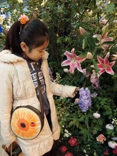 my-garden 127
