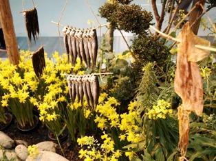 my-garden 097 (2)