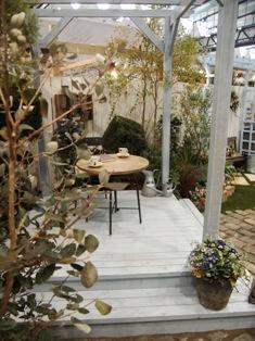 my-garden 162