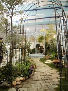 my-garden 173