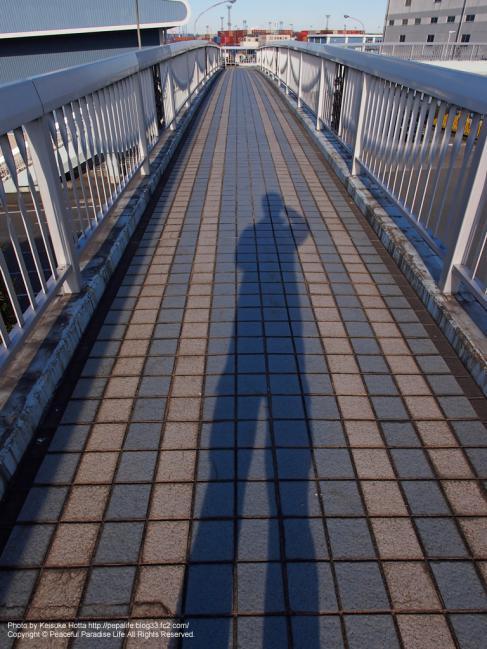 歩道橋と影