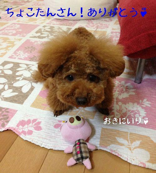 2013061906413251f.jpg
