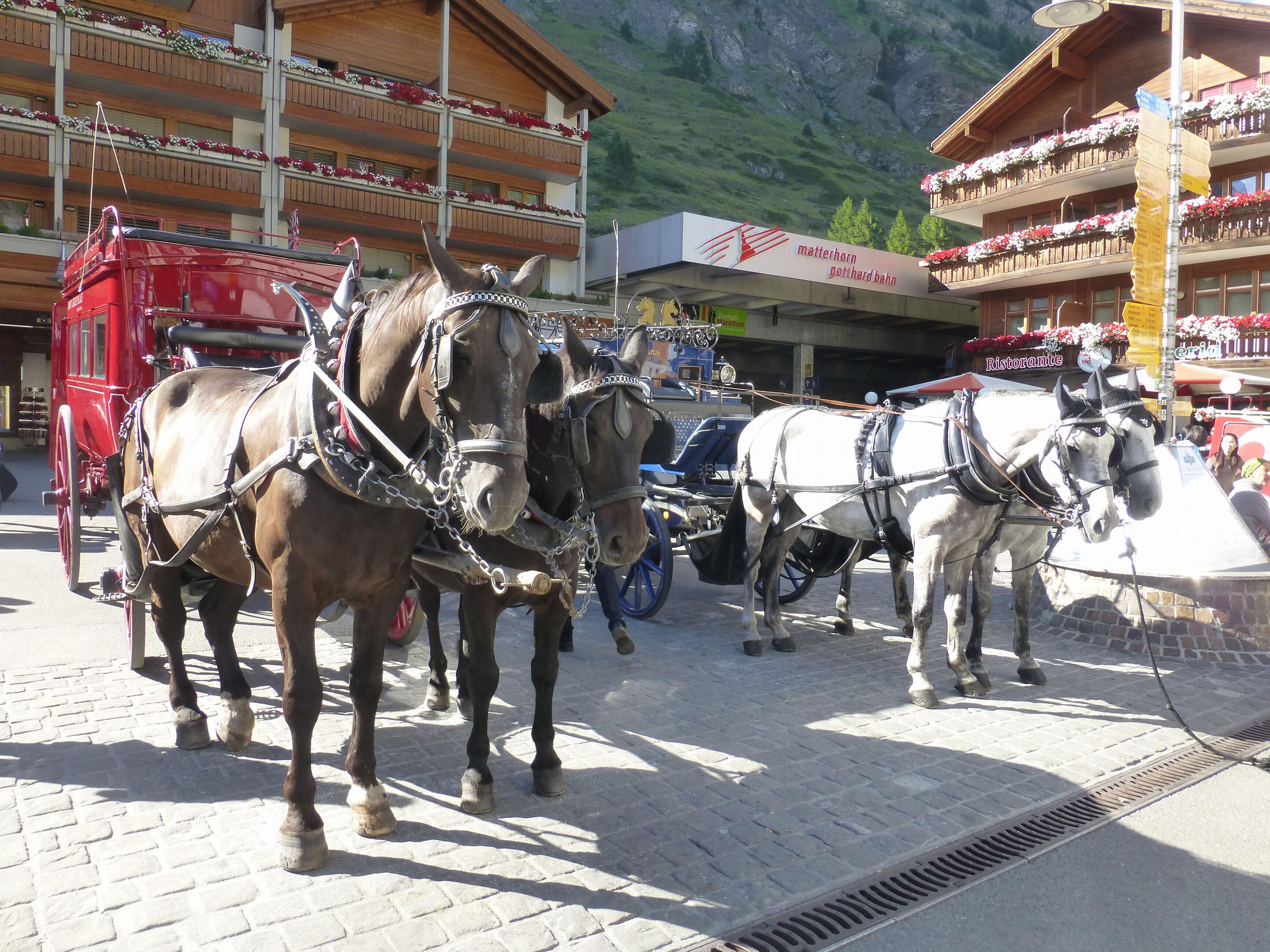 Zermatt03.jpg