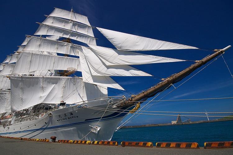 海王丸 2009-2