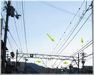 私ぃ、京都でハモ食べるのが、夢だったのぉ~♪&路面電車が来るのかと思ったら・・・(京都にコンサートを聴きに行って来ました♪)な話。