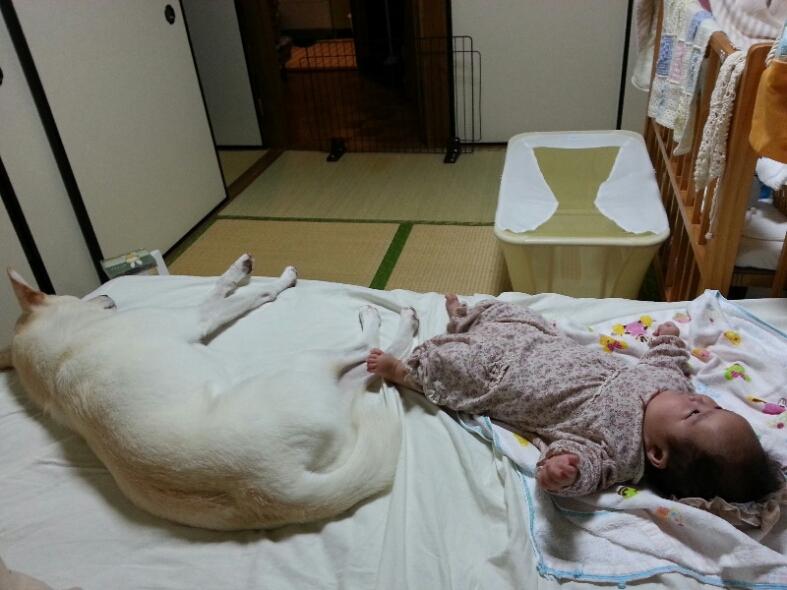 fc2_2014-10-08_11-48-26-134.jpg