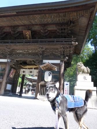 日牟禮八幡宮1