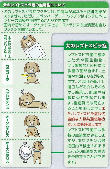 11種混合ワクチン14