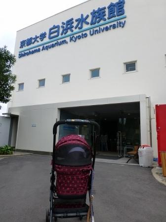 京都大学白浜水族館2