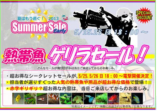 earlysummer2013E382B2E383AAE383A9E69CAC.jpg